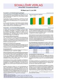 SV-Report_15-06-2020